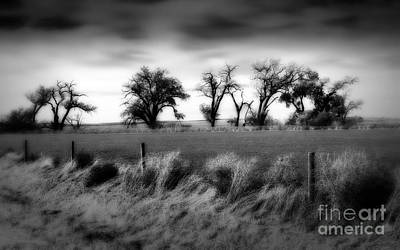 Photograph - Western Kansas Vista Bw by Fred Lassmann