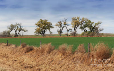 Photograph - Western Kansas Vista by Fred Lassmann