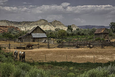 Photograph - Western Lifestyle by Elizabeth Eldridge