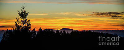 Photograph - Western Oregon Winter Sunset by Nick Boren