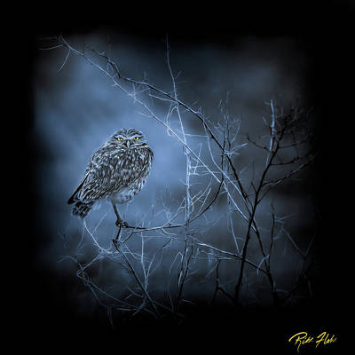 Art Print featuring the photograph Western Owl Gloom by Rikk Flohr