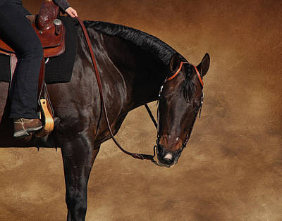 Photograph - Western Pleasure by Davandra Cribbie