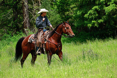 Photograph - Western Ride by Steve McKinzie