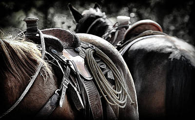 Photograph - Western Saddled by Athena Mckinzie