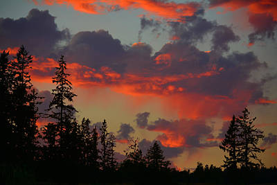 Photograph - Western Sky Fire by Theresa Pausch