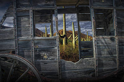 Wells Fargo Stagecoach Photograph - Western Stage Coach Among The Saguaro Cactus by Randall Nyhof