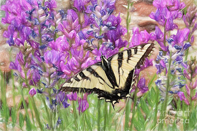 Photograph - Western Tiger Swallowtail On Purple Locoweed by Marianne Jensen