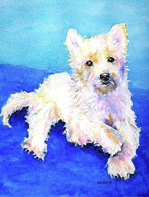 Watercolor Pet Portraits Painting - Westie Painting In Watercolor  by Carlin Blahnik CarlinArtWatercolor
