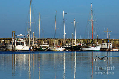 Photograph - Westport Fishing Fleet I by Chuck Flewelling