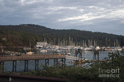 Photograph - Westsound Wa by Cindy Murphy - NightVisions