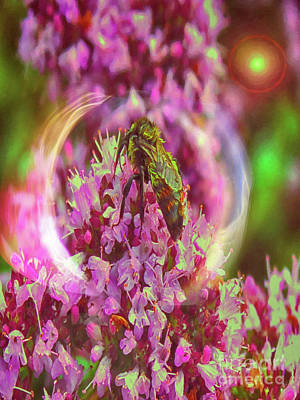 Digital Art - Wet Bee With Light by Donna L Munro