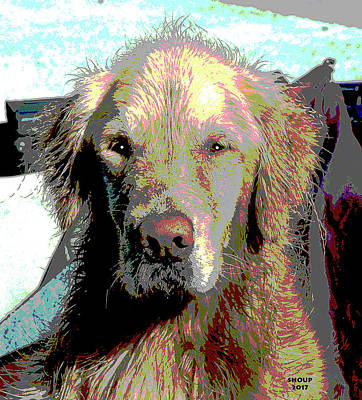 Water Dogs Mixed Media - Wet Dog by Charles Shoup
