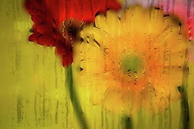 Photograph - Wet Glass Flowers by Brett Christensen