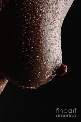 Provocative Photograph - Wet Nip by Jt PhotoDesign