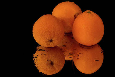Photograph - Wet Oranges With Reflection by Menachem Ganon