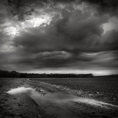 Wall Art - Photograph - Wet Spring by Jaromir Hron