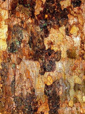 Wet Tree Bark 1 Art Print by Beth Akerman