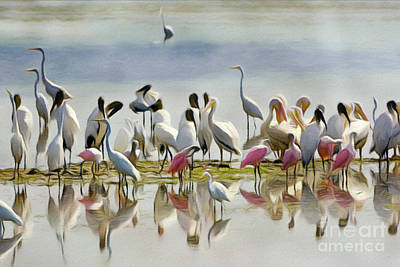 Spoonbill Digital Art - Wetland Friends 1 by Patrick M Lynch