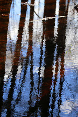 Photograph - Wetland Reflections 200 by Mary Bedy