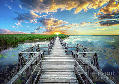 Photograph - Wetland Marsh Sunrise Treasure Coast Florida Boardwalk A1 by Ricardos Creations