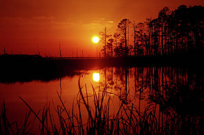 Art Print featuring the photograph Wetland Sunset by Robert Geary