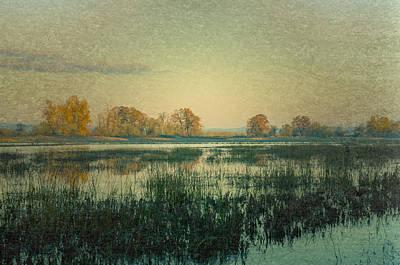 Photograph - Wetlands by Don Schwartz