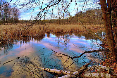 Photograph - Wetlands by Keith Boone