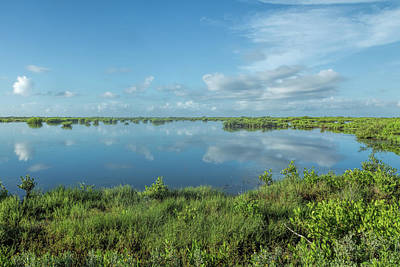 Photograph - Wetlands Of Florida by John M Bailey