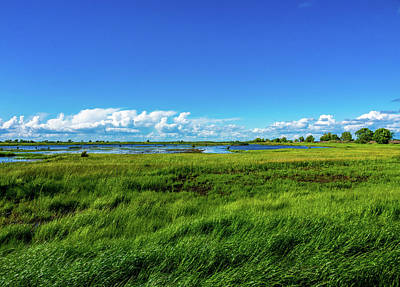 Wetlands On A Windy Spring Day Art Print