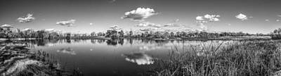 Wetlands Panorama Monochrome Art Print