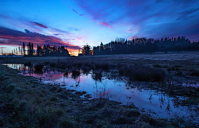 Photograph - Wetlands Sunrise by Bob VonDrachek