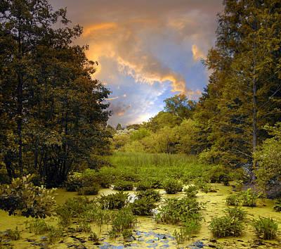 Wetlands Photograph - Wetlands Sunset by Jessica Jenney