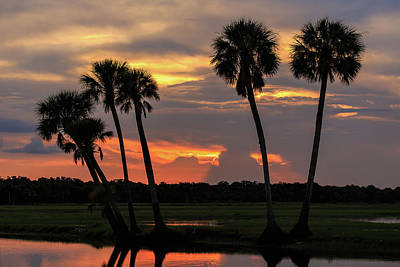 Florida Nature Photograph - Wetlands Sunset by Stefan Mazzola
