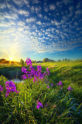 Photograph - We've Been Long Together by Phil Koch