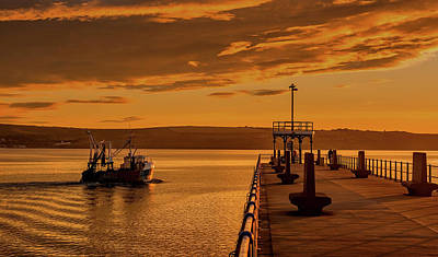 Photograph - Weymouth Harbor At Dusk by Tim Hill