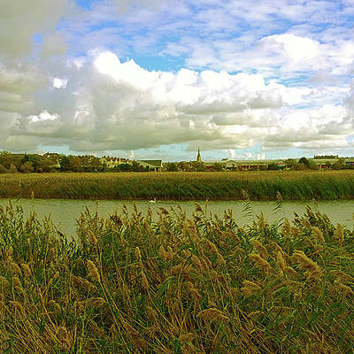 Photograph - Weymouth Nature Reserve by Anne Kotan