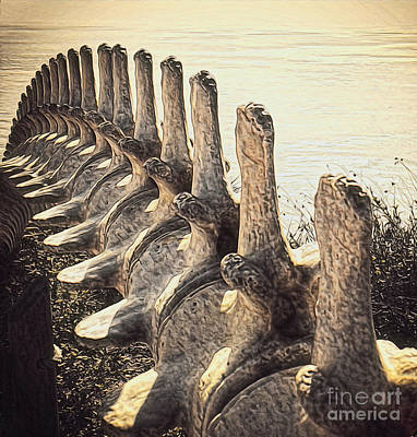 Photograph - Whale Bones by Gregory Dyer