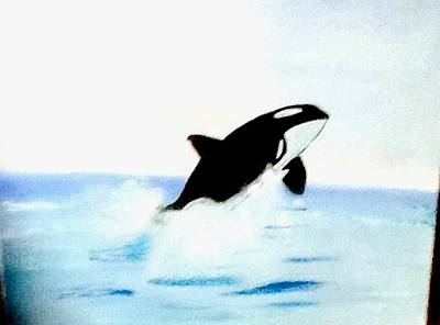 Painting - Whale In Oil  by Audrey Pollitt