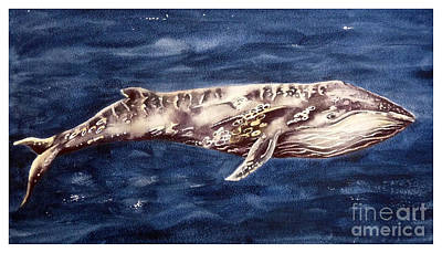 Humpback Whale Painting - Humpback Whale by Marie Burke
