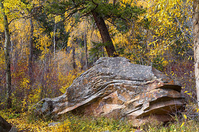 Photograph - Whale Rock by Kathleen Bishop