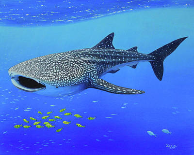 Whale Shark Art Print by James Zeger