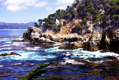 Point Lobos Photograph - Whaler's Cove 2 by Alan Hausenflock