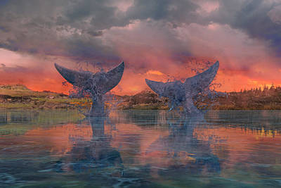 Reflecting Water Digital Art - Whales by Betsy Knapp