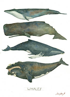 Baby Shower Painting - Whales Poster by Juan Bosco