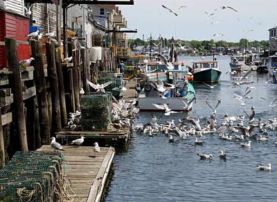 Photograph - Wharf Action by Lynda Lehmann