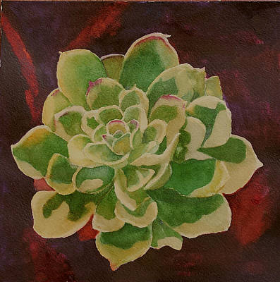 Hens And Chicks Painting - What A Chick by Judy Mercer