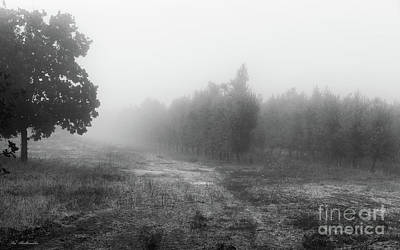 Photograph - What A Foggy Morning 03 by Arik Baltinester