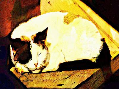 Digital Art - What Do Cats Dream Of by Robert Grubbs