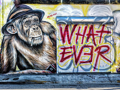 Photograph - What Ever Chimp by Robin Zygelman