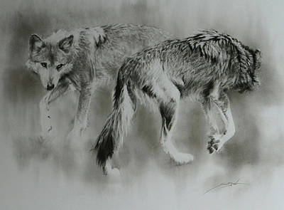 Fog Mist Drawing - What Goes Around Comes Around - Wolves by Susie Gordon